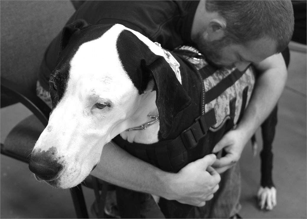 US Army veteran Bill with his service dog Colt taking a pause during class. Bill finds support and comfort with Colt. The connection between them is strong.