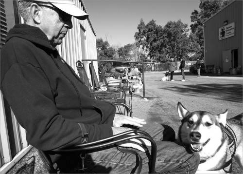 """On a break at training class, Vietnam Veteran Marv Lewis rests with his service dog Kairu by his side. """"Kairu helps me in a lot of ways. Sometimes she'll jump on my lap if she knows I'm depressed. I have a hearing loss from a shelling gone bad so I can't hear somebody coming in the house but she alerts me by her reaction."""""""