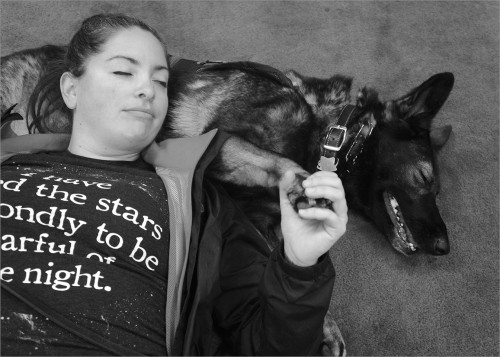 US Army Veteran Melissa and her service dog Holly travel from Los Angeles for monthly training at Operation Freedom Paws. Melissa served in Afghanistan during Operation Enduring Freedom. With Holly, she is on a healing path, going on new adventures once thought not possible.
